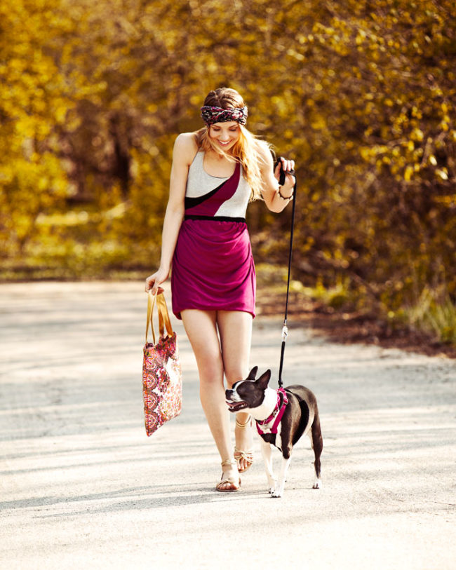 Girl walking Boston Terrier Dog
