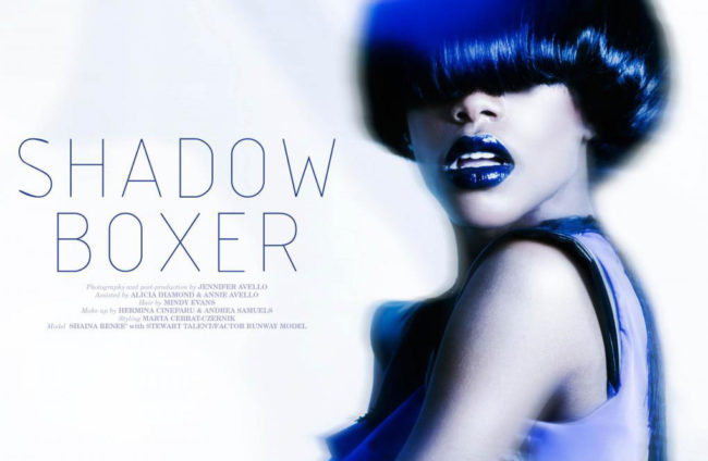 Shadow Boxer Cover Opener for Papercut Magazine
